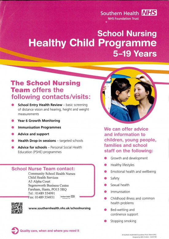 The School Nursing Team Poster