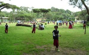 Ethiopian School6